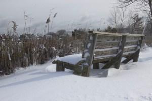 Biller.PetPeeve.Winter