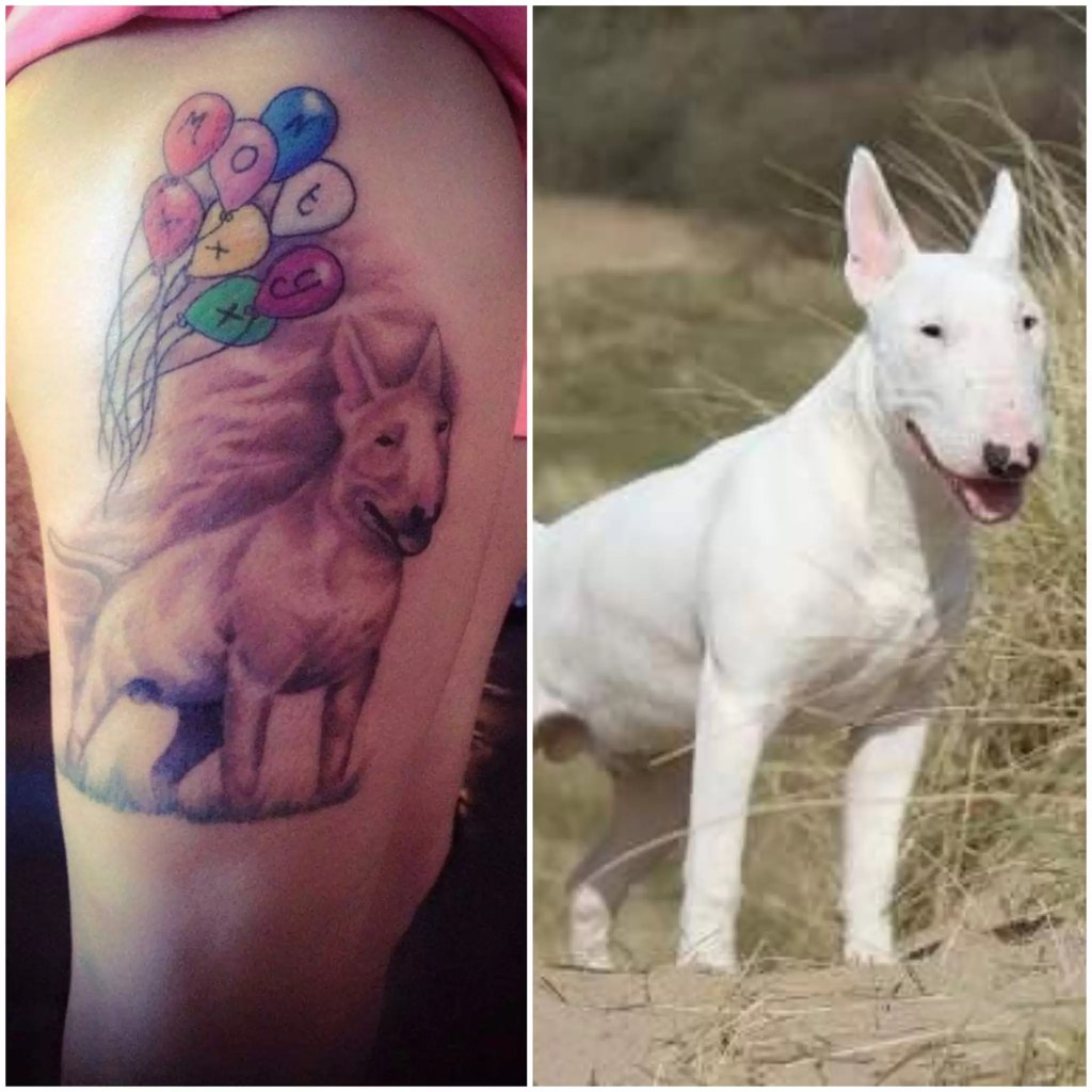 A wonderful tattoo tribute to Monty the dog
