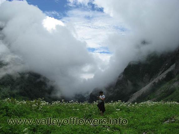 Middle of valley of flowers
