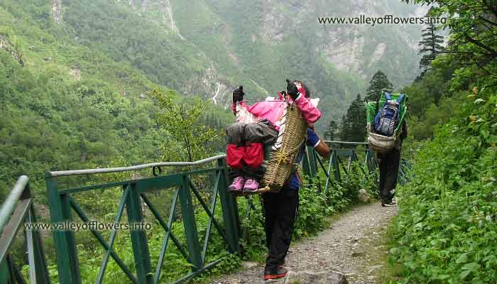 Ghangaria to valley of flowers by porter.