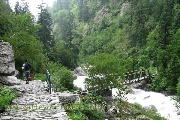 Bridge over Pushpawati, Just 500 meters inside valley of flowers entry gate. This bridge is swept away by floods. This picture was taken in 2010.