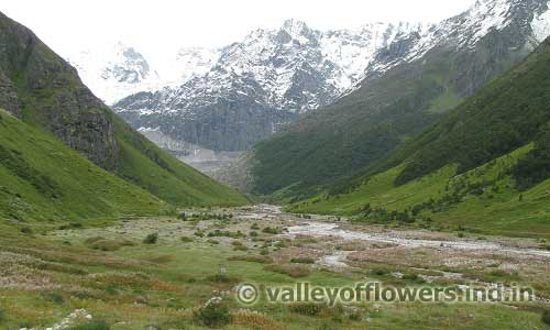 Valley of flowers in September