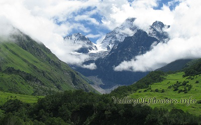 Tipra Glacier seen from Valley of flowers