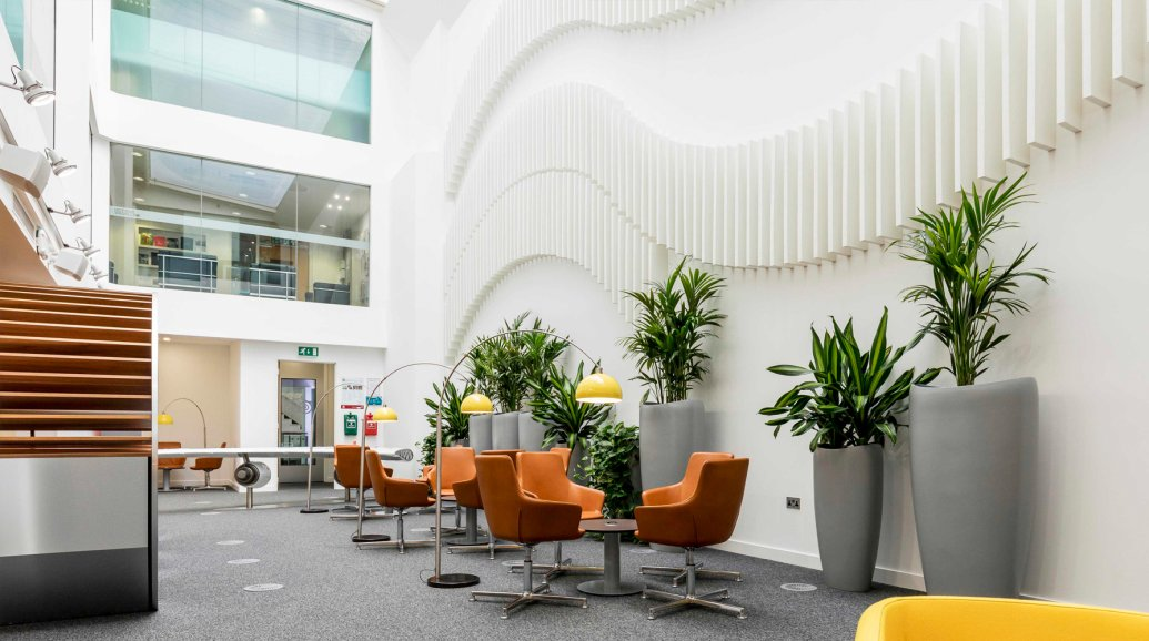 Valley Provincial, interior office plants, corporate office planting London, office plants, interior office plants London, interior office planting, hotel landscaping
