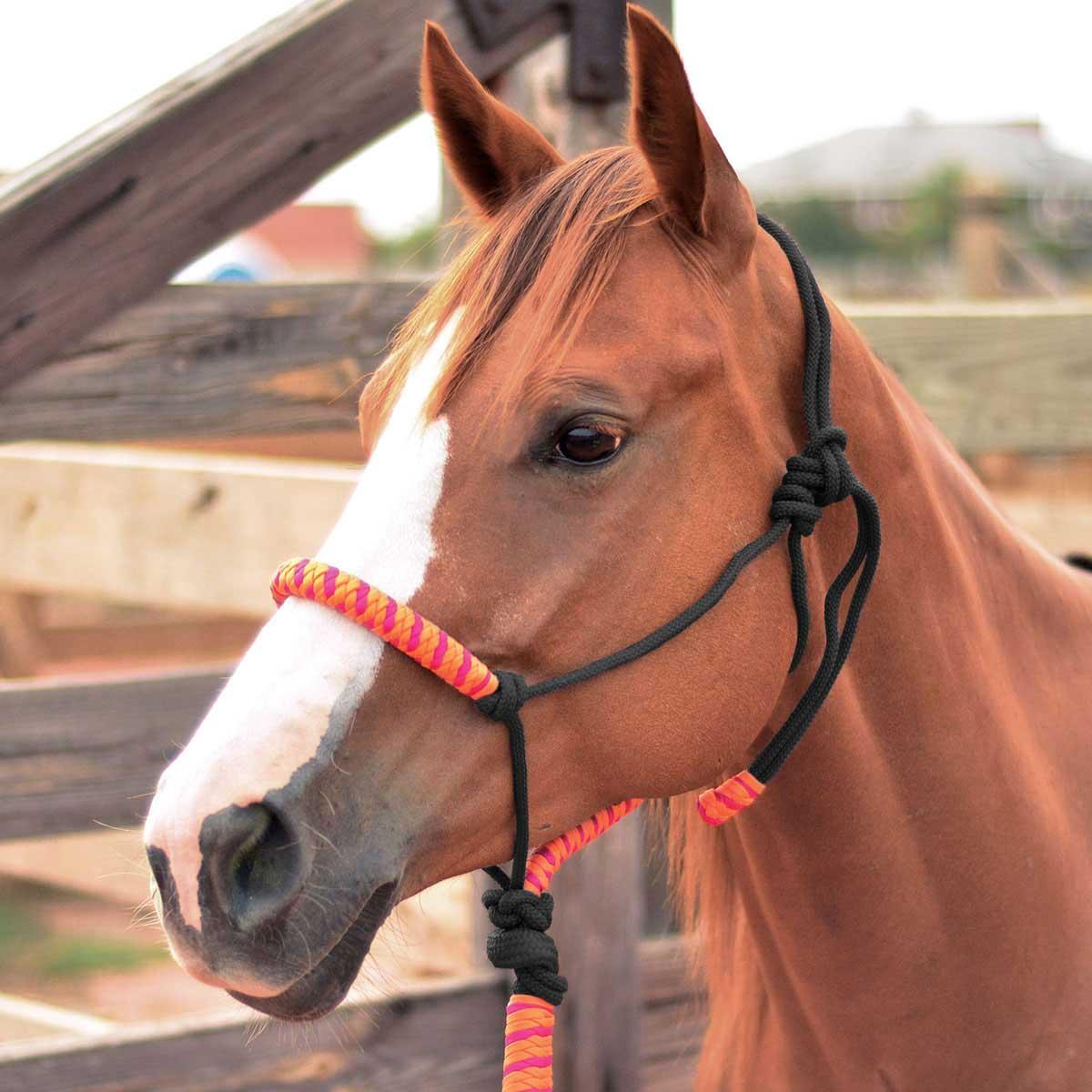 Rope Horse Halter Orange Fuchsia Item 41044