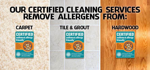 Stanley Steemer Coupons Carpet Cleaning Online Coupons
