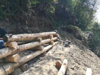 lavori post alluvione_alm2