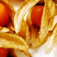 Health benefits of Incan berries
