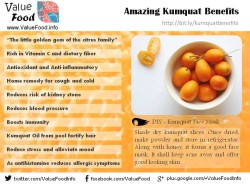 Infographics - benefits of kumquat