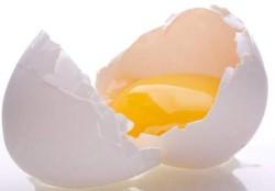 benefits of raw egg