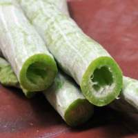 Health benefits of snake gourd