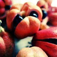 Health benefits of Ackee - the Jamaican fruit blast!