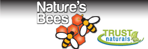 natures-bees-mini-freatures