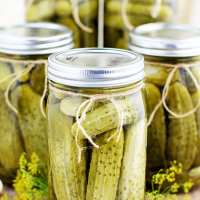 Easy Canned Dill Pickles Recipe
