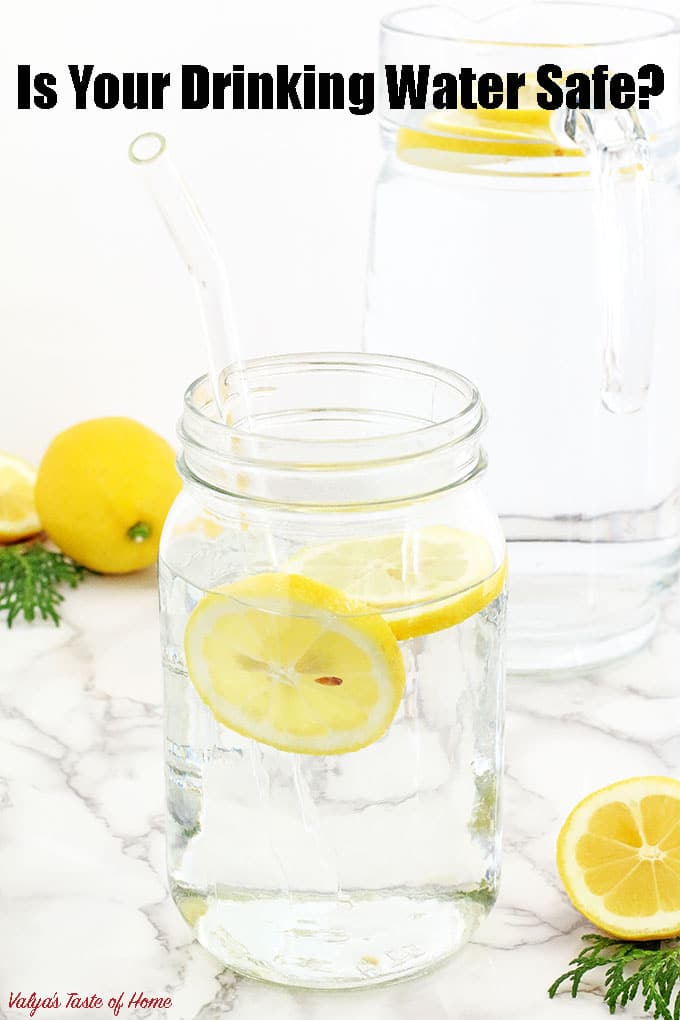 Have you ever questioned yourself what kind of water you drink? I know we often don't think about it. We are so used to turning on the tap, filling a glass of water and drinking it, right? Some purchase bottled water while others filter their water, but which way is the safest? | www.valyastasteofhome.com