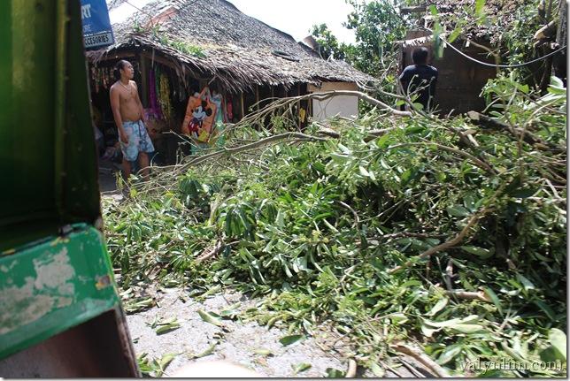 Typhoon Haiyan (37)