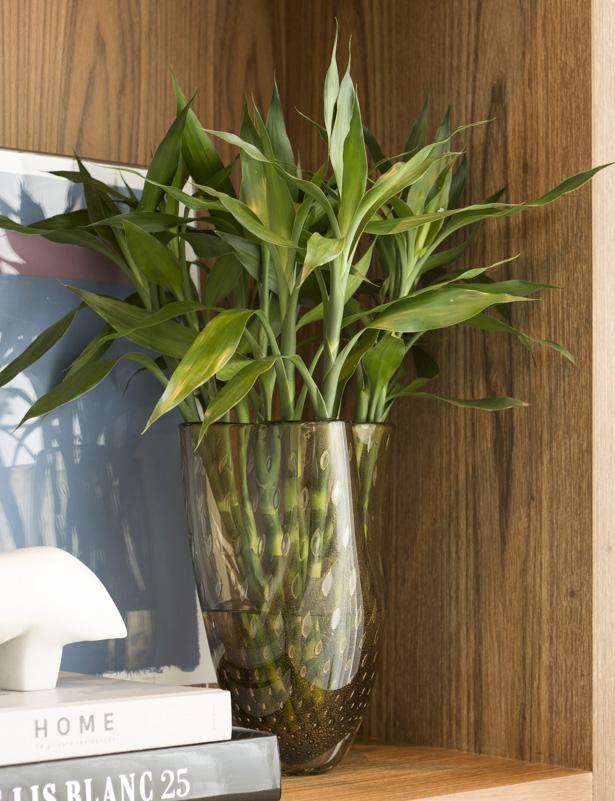 arranjo com bambu em vaso cá d'oro
