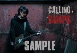 calling-vamps-kaz