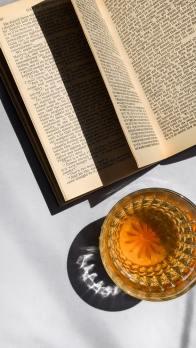 intervista a manuel sgarella - libro