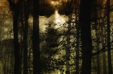 foresta con volto storie da incubo