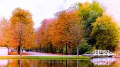 2015 Herbst-Impressionen @ Schlossgarten SchwetzingenAufgenomm