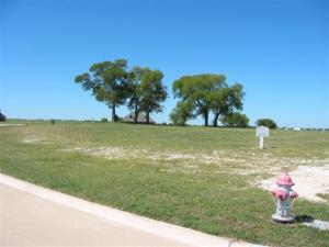 Running Deer Property -Gunter,TX