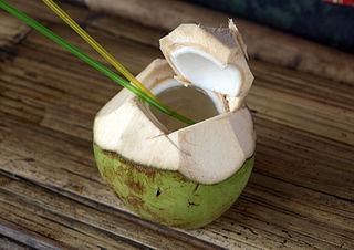 Gefermenteerd kokoswater