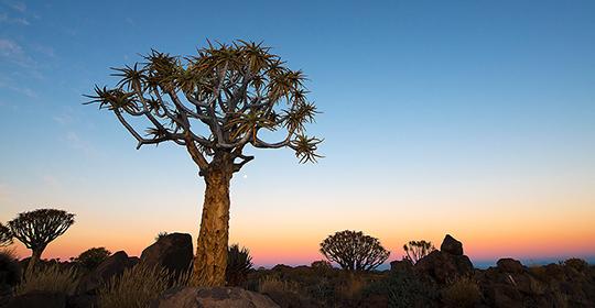 Rondreis Namibie Keetmanshoop