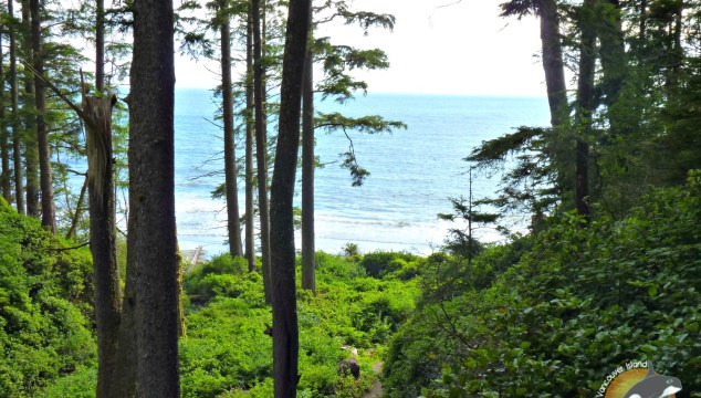 6 steps to enjoying a romantic getaway on Vancouver Island. All the things to see and do on Vancouver Islands 'other' West Coast.
