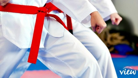Martial Arts Party - a great list of Central Vancouver Island birthday party locations.