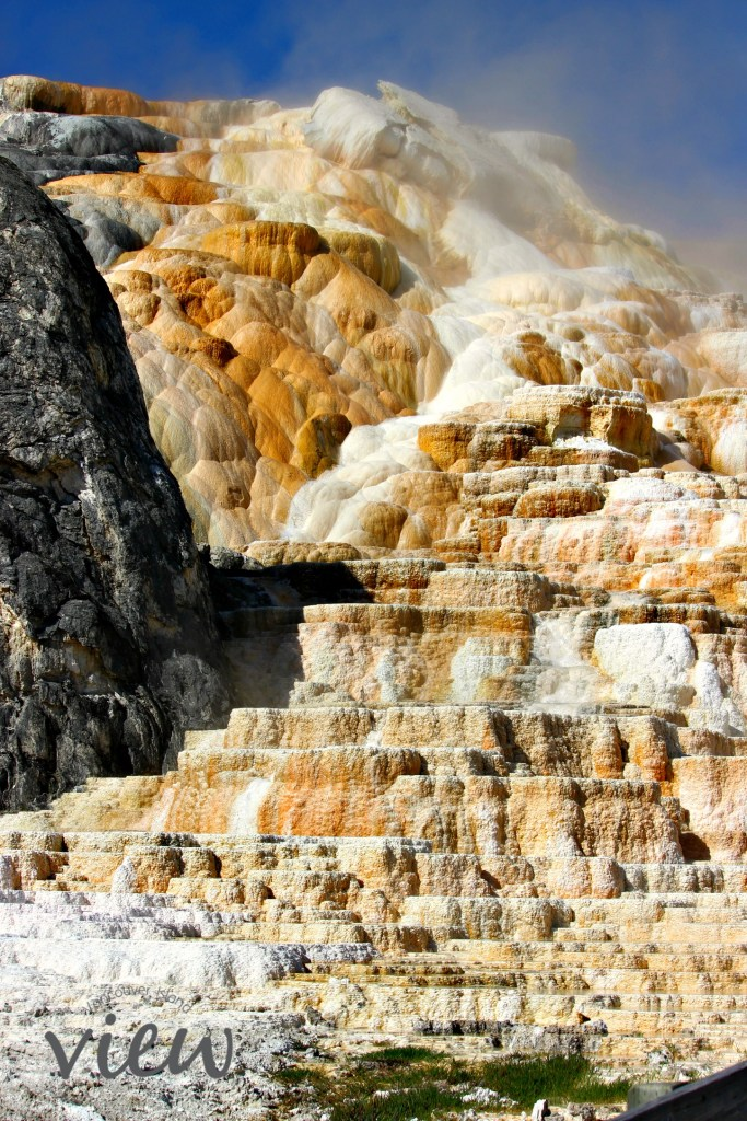 Mammoth Hot Springs - Yellowstone National Park highlights, and tips and tricks on making the most of your trip.