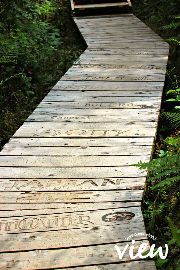 Hot Springs Cove boardwalk. Hot Springs Cove is a tour destination you should not miss while in Tofino on Vancouver Island