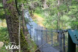 Haslam Creek Suspension Bridge - one of the many hidden gems of Vancouver Island.