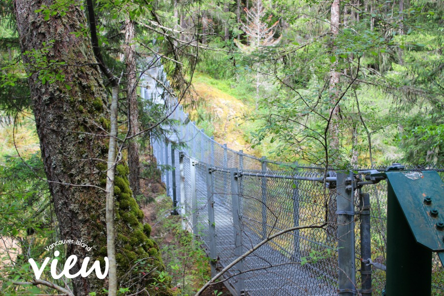 Haslam Creek Suspension Bridge - one of the many hidden gems of Vancouver Island.