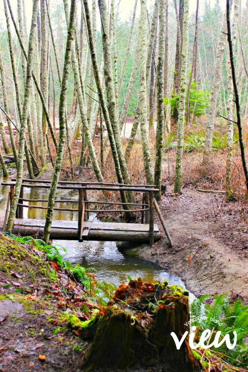Top Bridge Trails - one of the many hidden gems of Vancouver Island