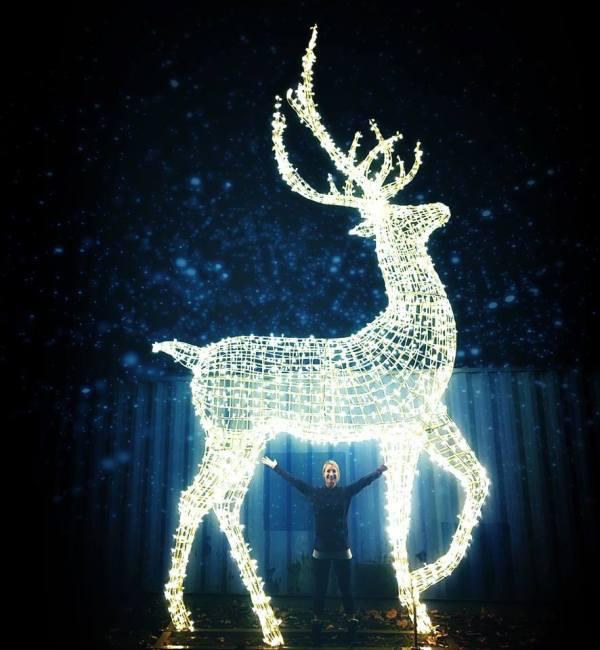 Enchant Christmas Light Maze and Market