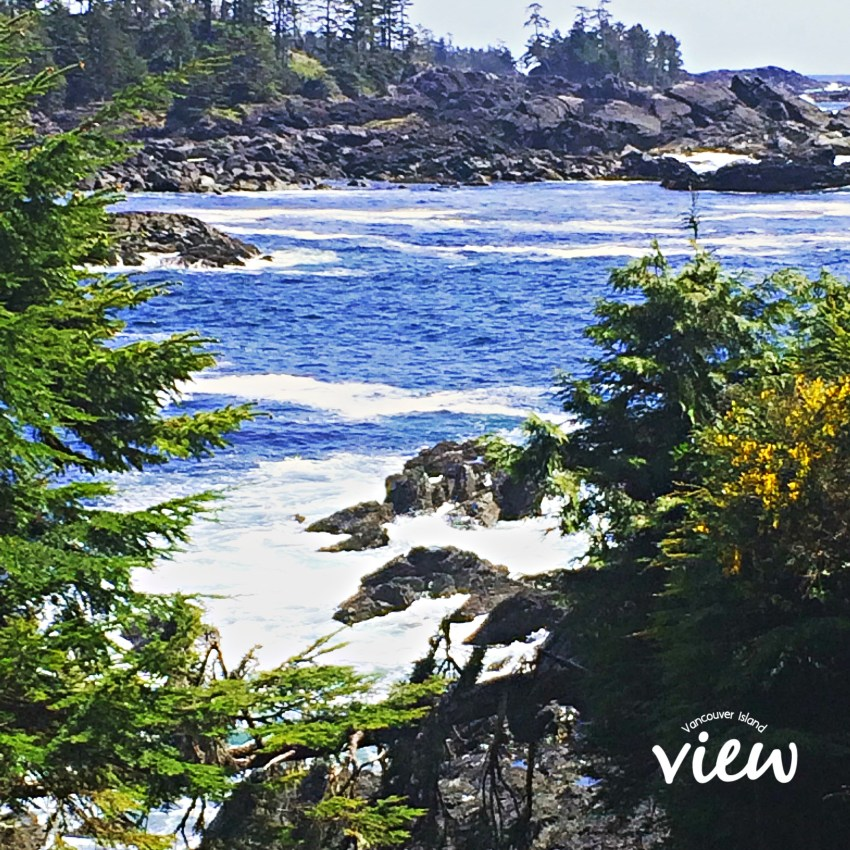 Are you planning a trip to Ucluelet on the West Coast of Vancouver Island? Here is a review of the top resorts in the area.