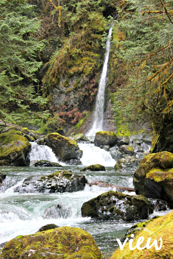 Rosewall Creek Falls is one of the many accessible (and truly magnificent) waterfalls found on Vancouver Island.