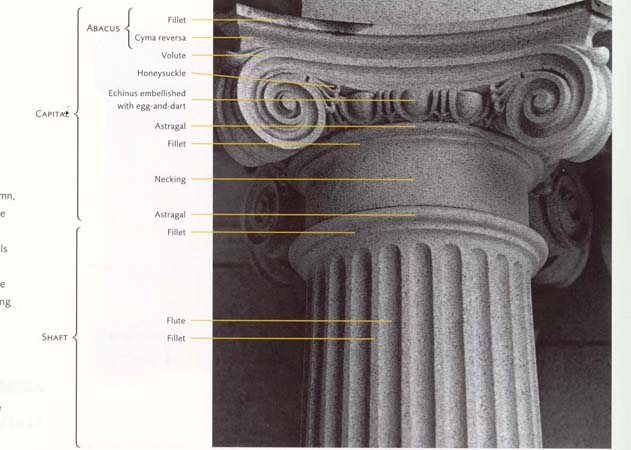 What Are Parts Greek Column