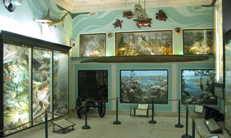 Long Island Museum Exhibits