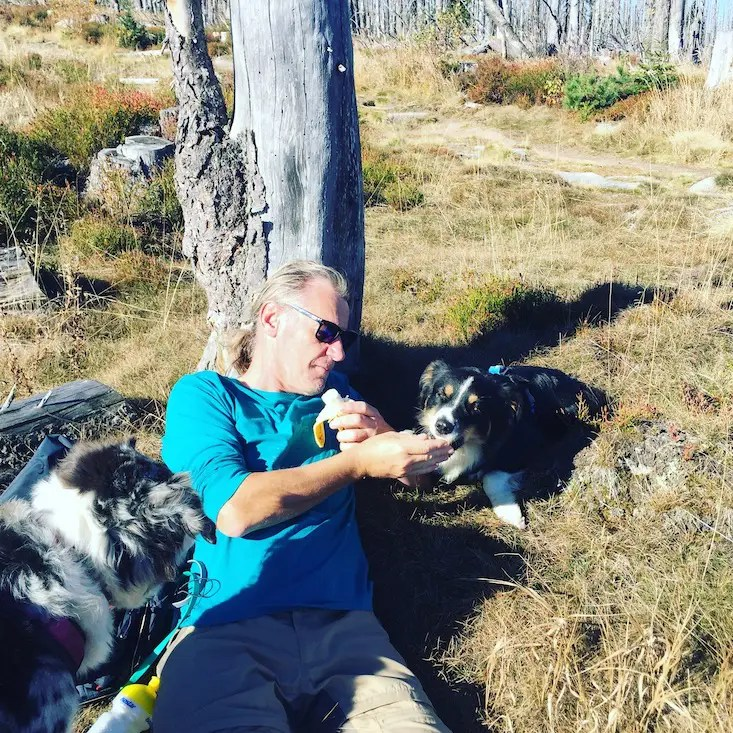 Hundemensch Hundeliebe Wandern Böhmerwald Camping
