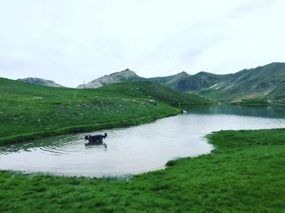 Lac Verdet Wandern Wanderung Hund Frankreich Alpen