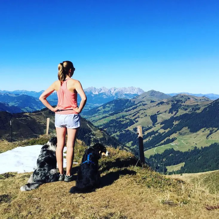 Camping mit Hund wandern Wanderung Tirol Australian Shepherd Berge