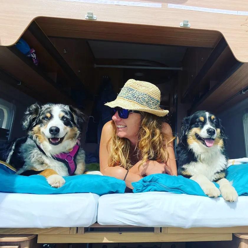 Vanlife mit Hund Corona Reisebeschränkungen Campin g Kastenwagen