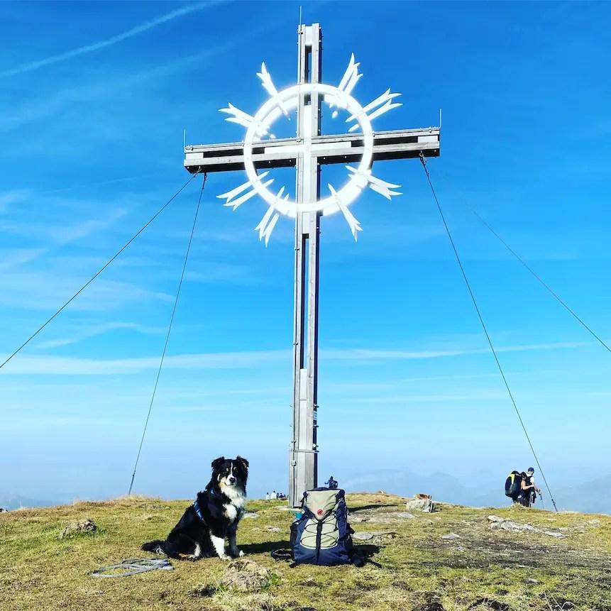 Kitzbüheler Alpen Lodron Wandern mit Hund Windau Kelchsau Australian Shepherd Lodron Gipfel Brixental