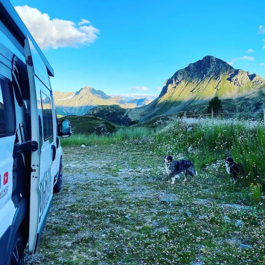 Camping mit Hund Vanlife Packliste Australian Shepherd Reisen Wohnmobil