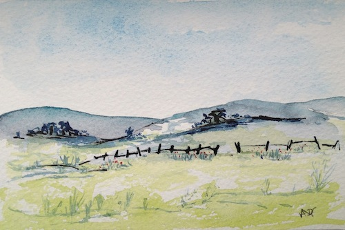 Watercolour - summer field