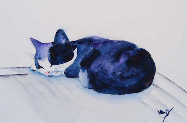 Watercolour painting. Cat Napping (RWB0067) Artist: Vandy Massey