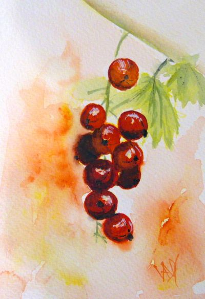 Red Currants (watercolour 4 x 6 inches)  Artist: Vandy Massey