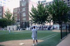 Little league baseball op zaterdagmiddag